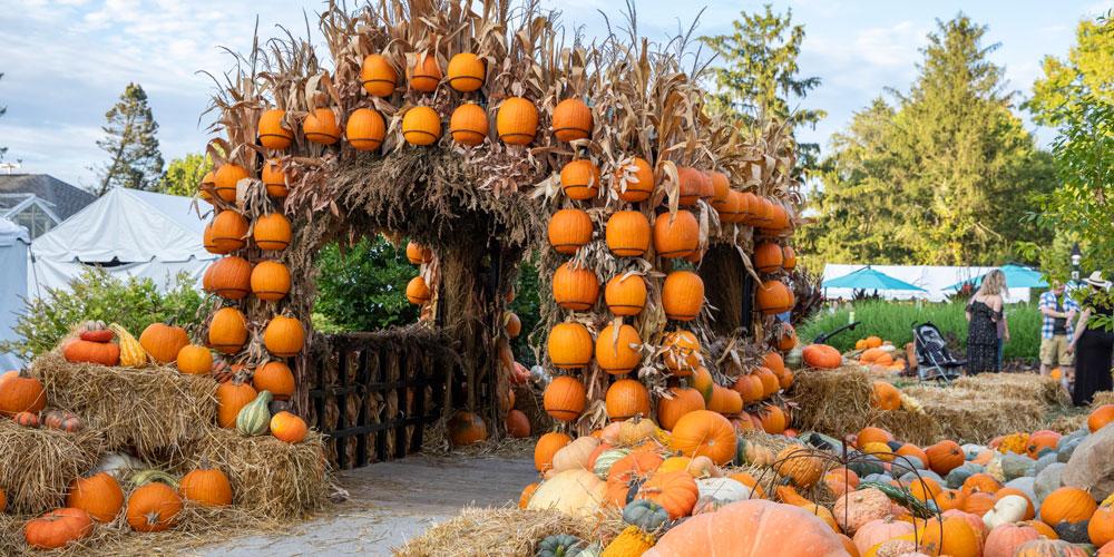 Pumpkins at Newfields Harvest Days